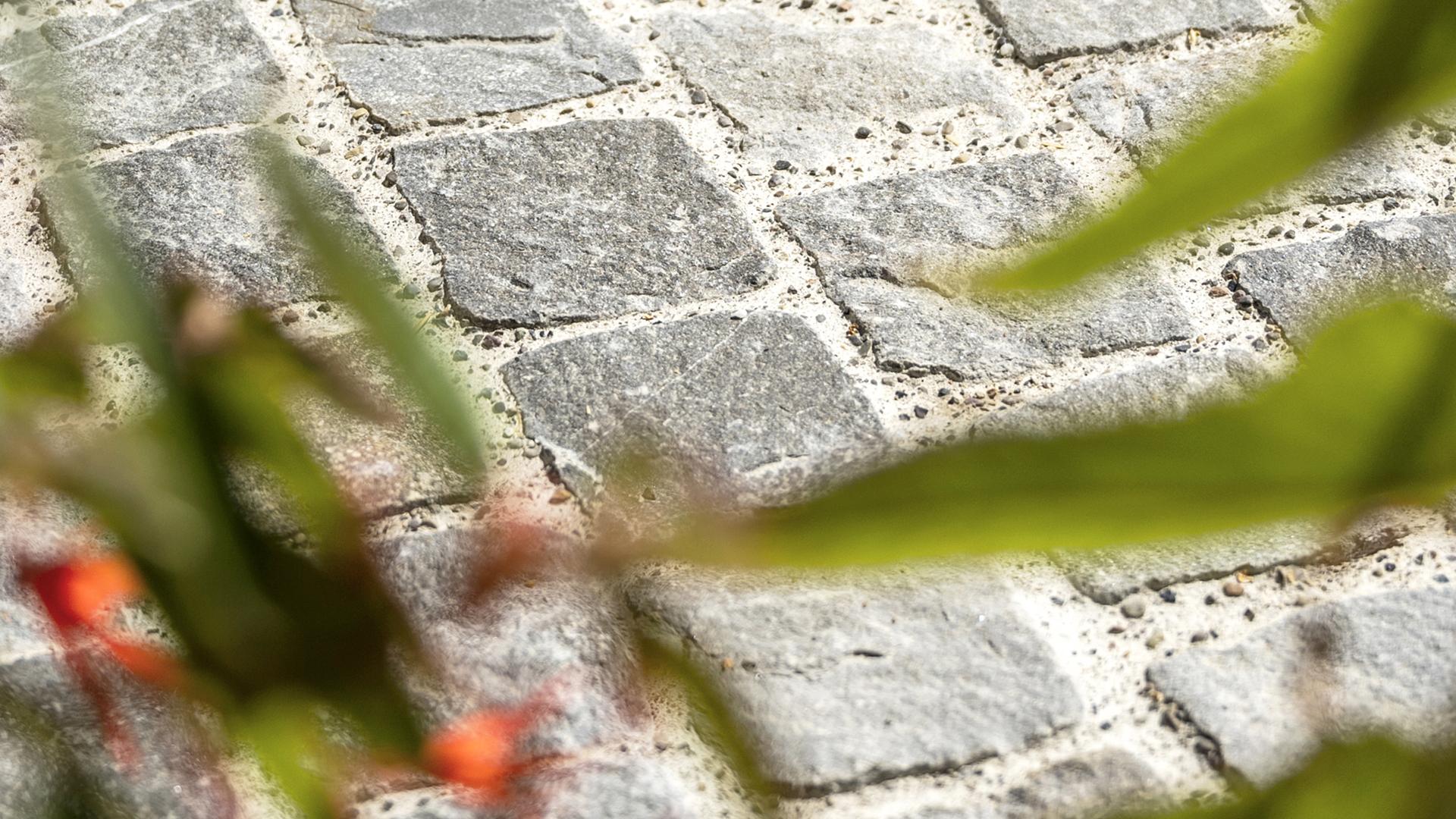 Gartenausstellung Nänikon - Feinsteinzeug, Steinkörbe, Verbund- und Pflastersteine